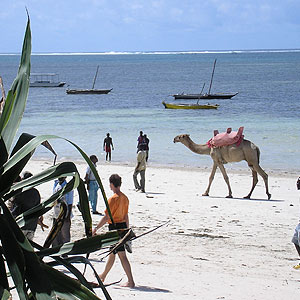 Kenya tengerpart