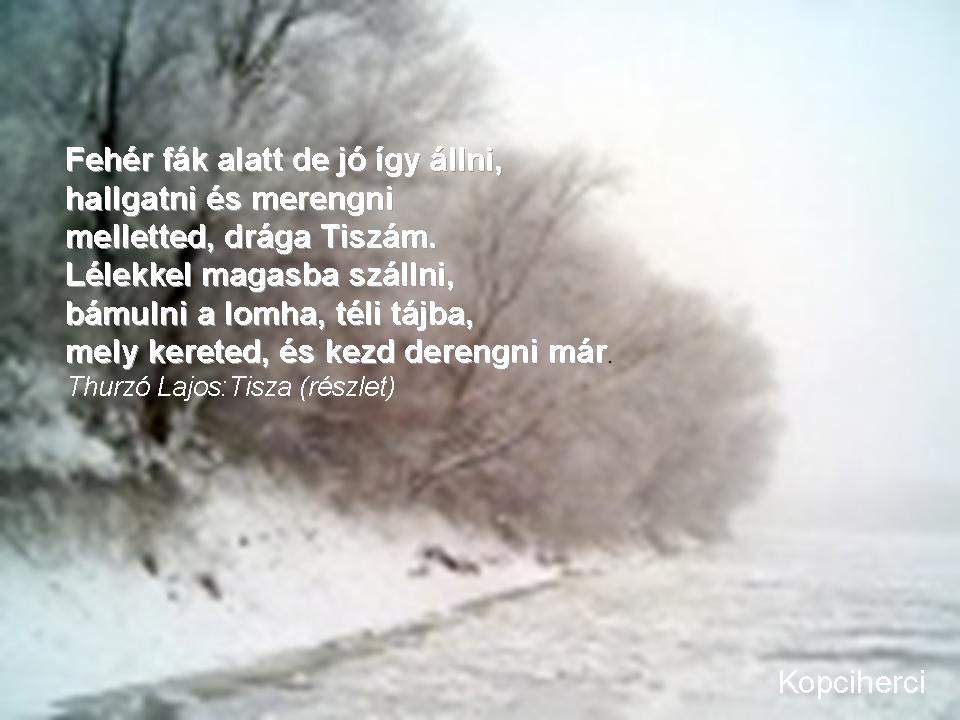 magyar irodalom idézetek Idézet: A Tisza a magyar irodalomban