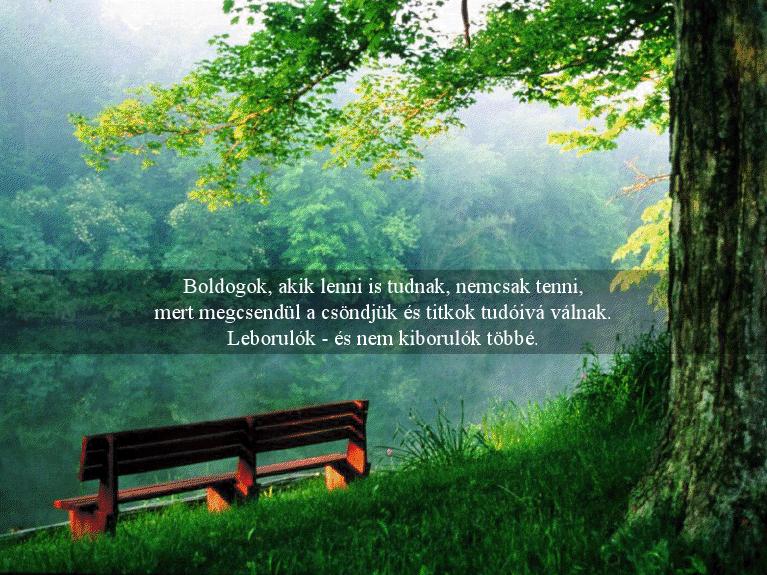 gyökössy endre idézetek Virágok virága,Gyökössy Endre..gondolatai,Idézet,..idézet