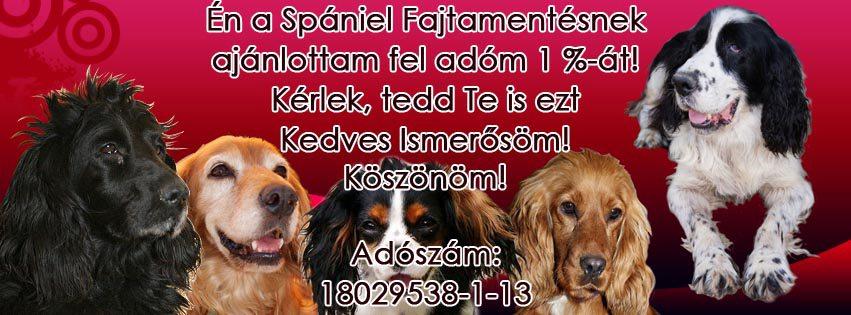 349768_559783279_big