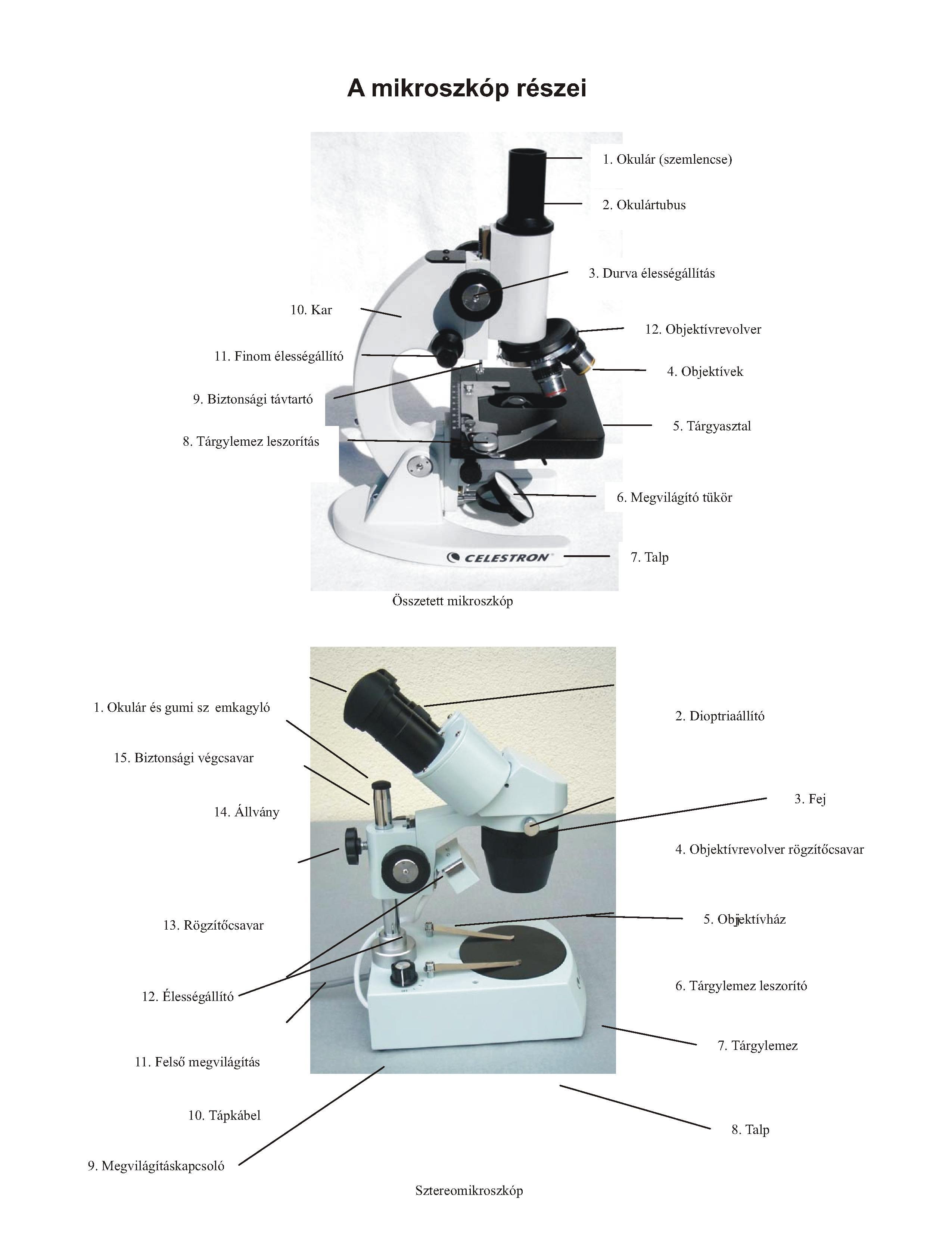 mikroszkóp homályos látás káposzta a látáshoz