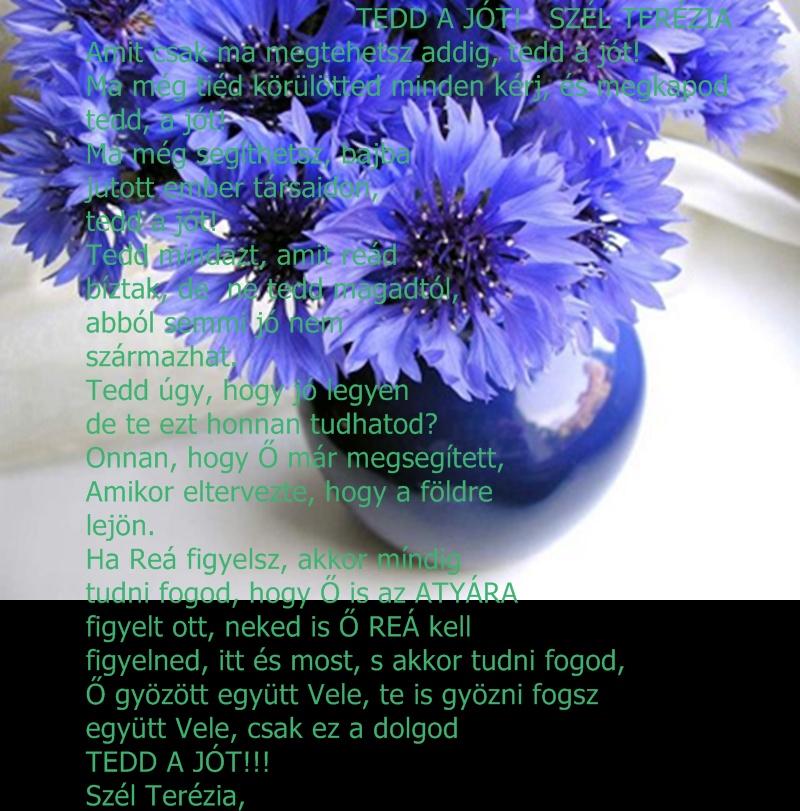 390713_252895903_big