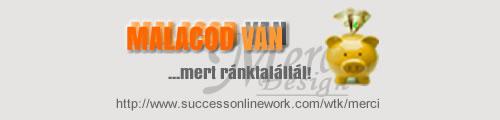486361_306938286_big