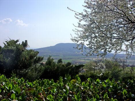 Badacsony, a Szent György-hegyről nézve