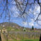 Szent György-hegy,áprilisban
