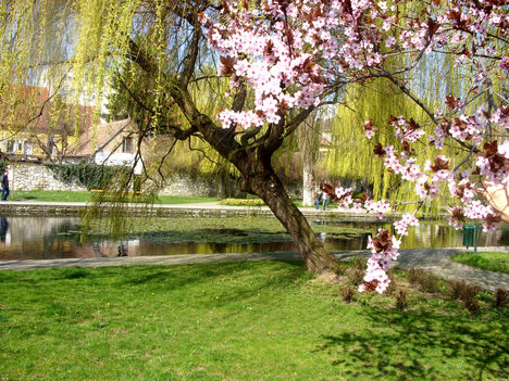 Tapolcai tavaszi kép