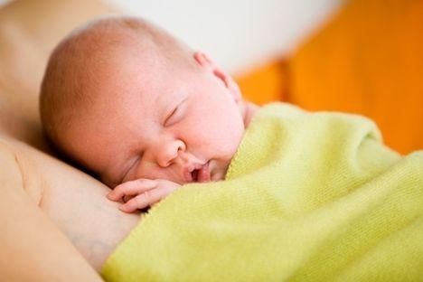 alvó baba 1