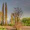 Tavaszodó Erdő