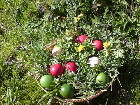 Kellemes és boldog húsvéti ünnepeket kívánok mindenkinek!