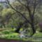 Nagy Egres patak