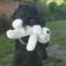 Snoopy-t loptam!