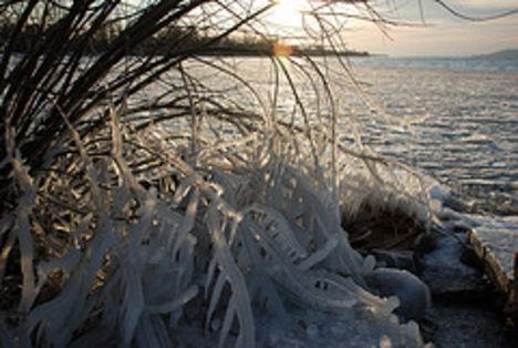 Téli csendélet a Balatonon