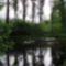 Igrice-mocsár tó