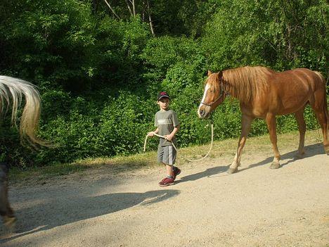 - Dani lovastáborban