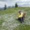 Borimmal a virágos hegytetőn