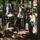 Állatkertben az óvodások-2011