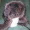 Mosómedve usánka