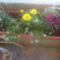 balkonom 2