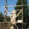 Szentháromság szobor , felújítás
