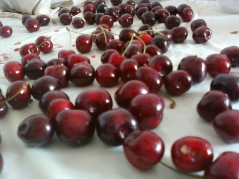 cseresznyemagozás 1