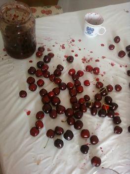 Cseresznyemagozás 6