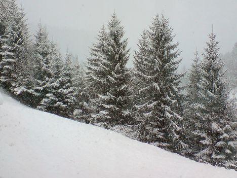 Téli kép áprilisban