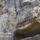 Torokorszag_2007_demremyra-002_1105383_2530_t