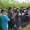 Sajó Károly Kárpát-medencei környezetvédelmi csapatverseny 2011. Gönyű 29