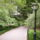 Central_park-002_116398_70252_t