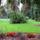 Central_park-005_116401_77465_t