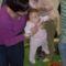 Gézengúzosok a baba-mama klubban 13