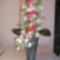 virágoszlop
