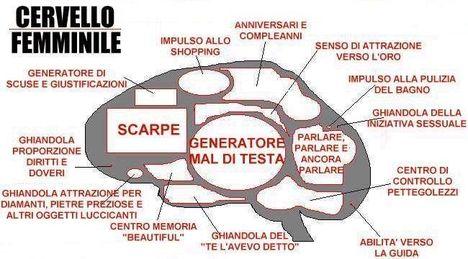 cervello_femminile