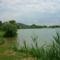 Horgásztó a Pilisben