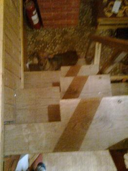 Fifi lépcsőzik