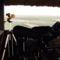 Kardoskúti Fehér tó