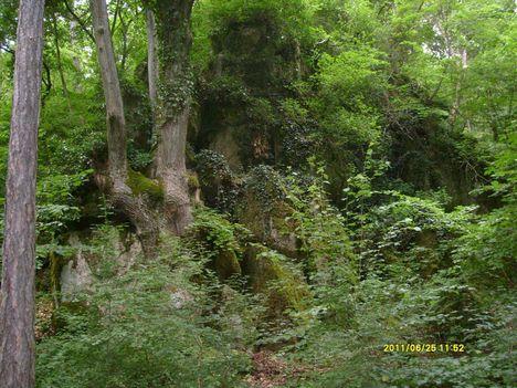 Koloska völgy