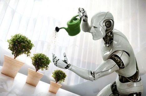locsoljuk meg a növényeket