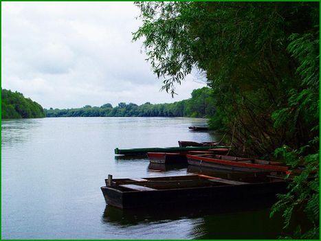 Szabolcs község Tisza partja