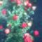 Kép018(keddvenc virágom a rózsa,nálunk.)