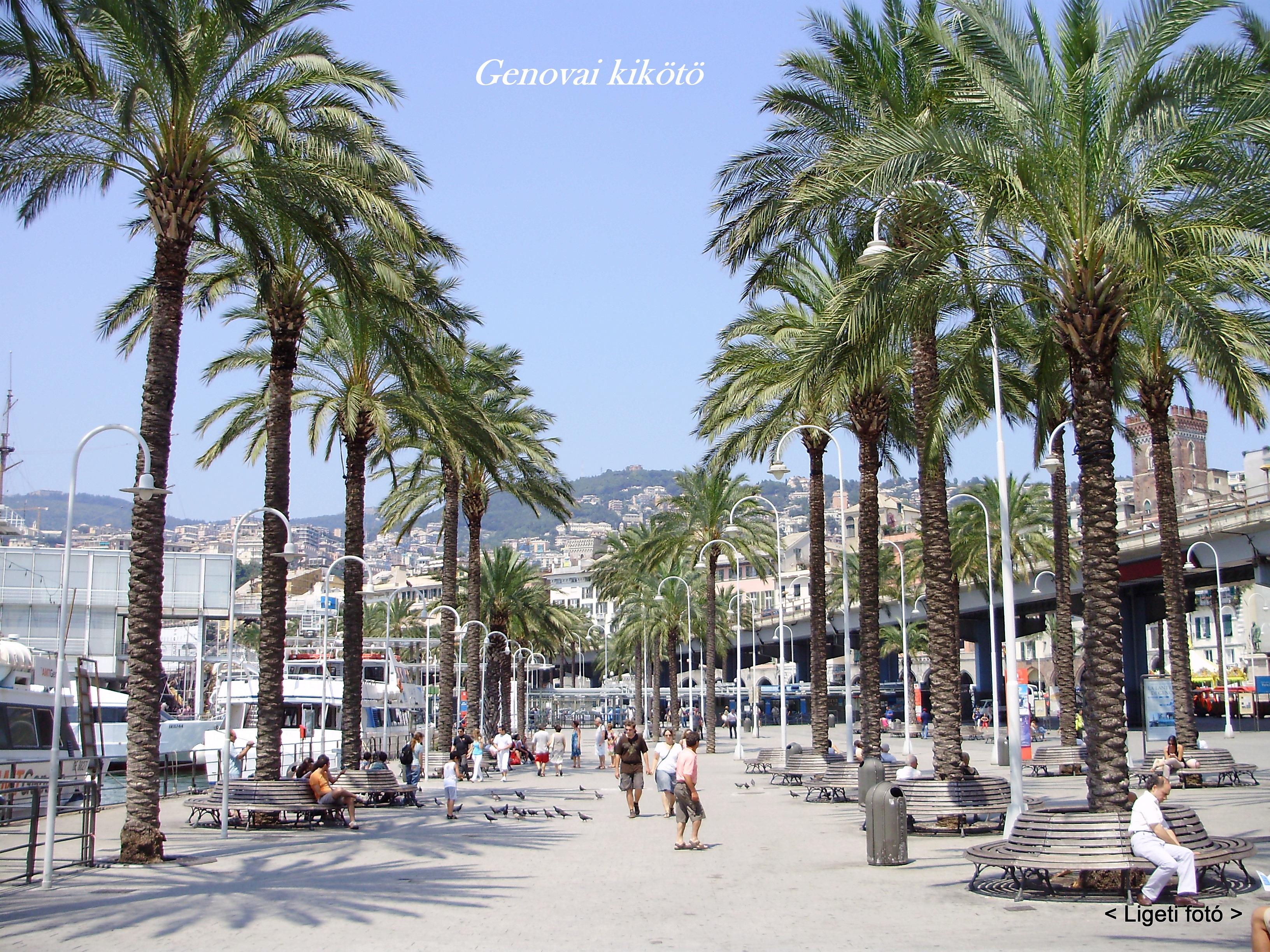 genova térkép Olaszország: Genovai kikötő   2011. 06. 27. (Porto di Genova) (kép) genova térkép