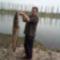 Kifogott harcsa a dányi tóból