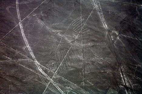 Nazca 6