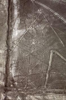 Nazca 7