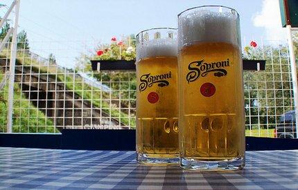 Soproni sör 12