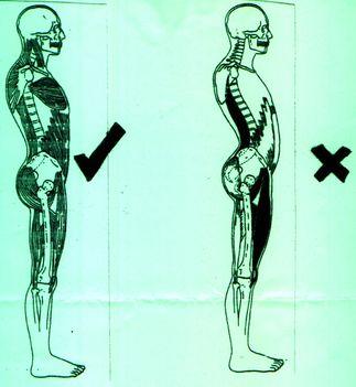 A gerinc helyzete