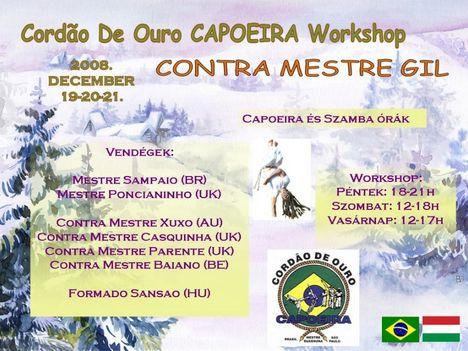 CDO Workshop 2008  December