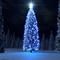 Karácsony fa