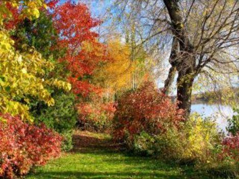 Őszi tájképek2