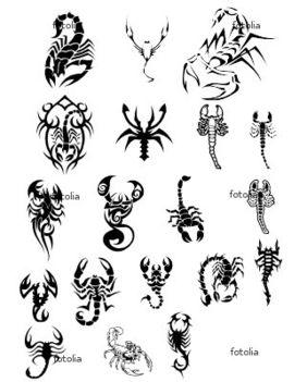 Skorpi tattoo